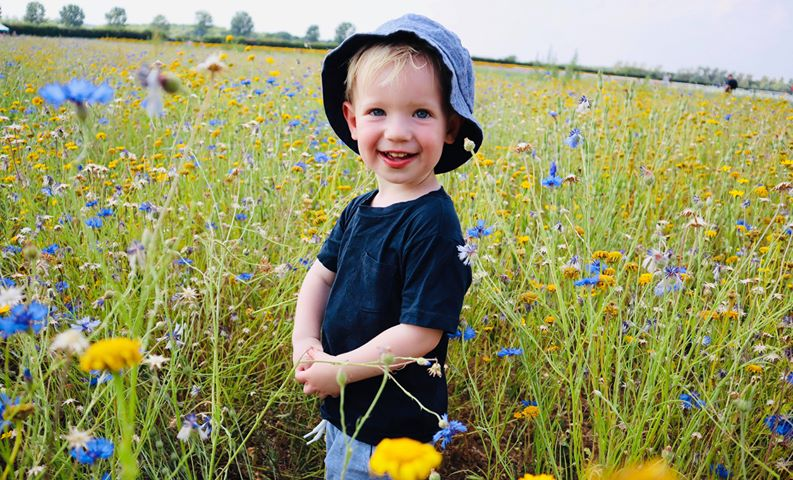 A little boy in the wildflowers - part of The Confetti Flower Field 2020 - photo by Charlotte Hallett