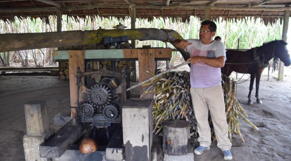 rum distillery in the amazon rainforest