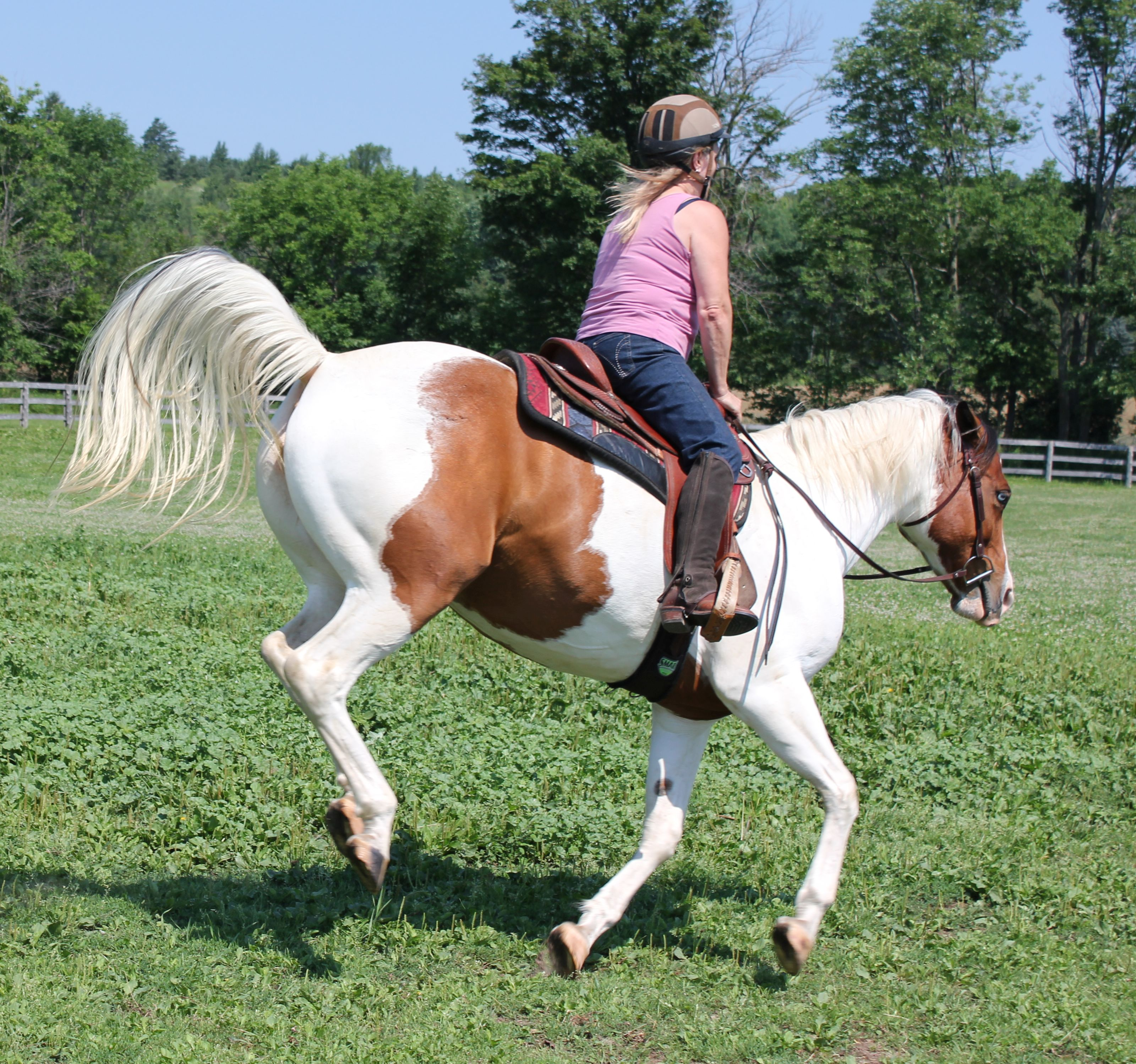 End Horse Bucking: a quick & complete guide
