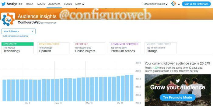 seguidores twitter configuroweb