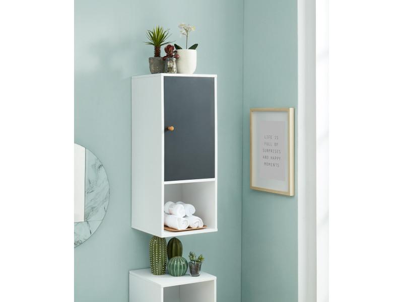 meuble mural pour salle de bain coloris