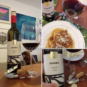 Adama 2014 – Avaliação de vinho Merlot