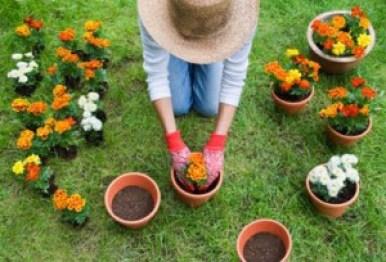 lavori-giardinaggio