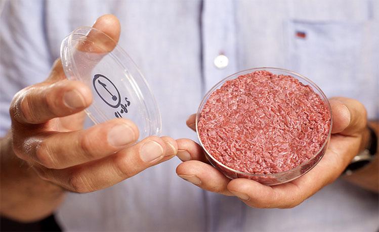 carne-de-hamburguesa-cultivada-en-laboratorio