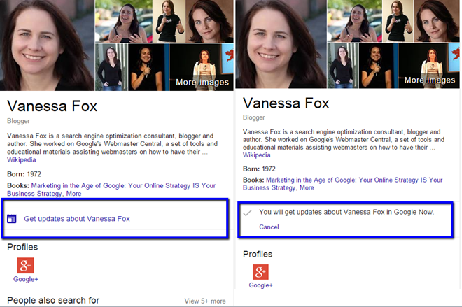 Knowledge Panel result for Vanessa Fox