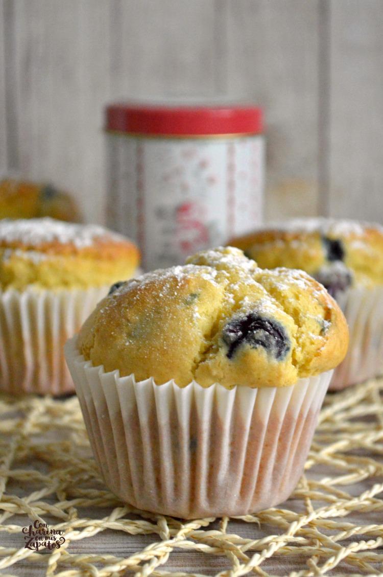 Muffins de Yogur con Avena y Arándanos