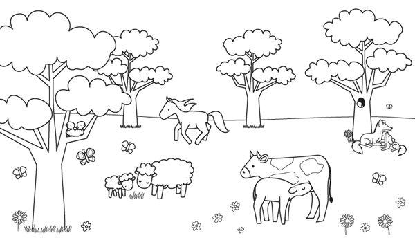 Imprimir: Animales en el campo: dibujo para colorear e
