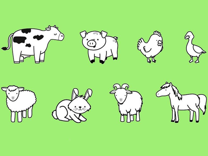Como Dibujar Animales De Granja