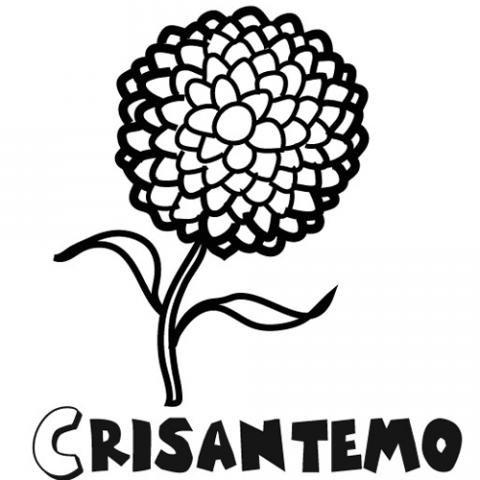 Crisantemo: Dibujos para colorear