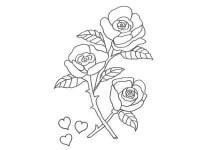 Dibujo de rosas y corazones para pintar con nios