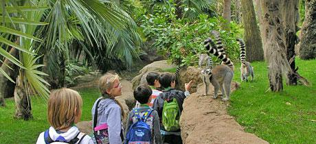 Actividades infantiles en el zoo de Málaga