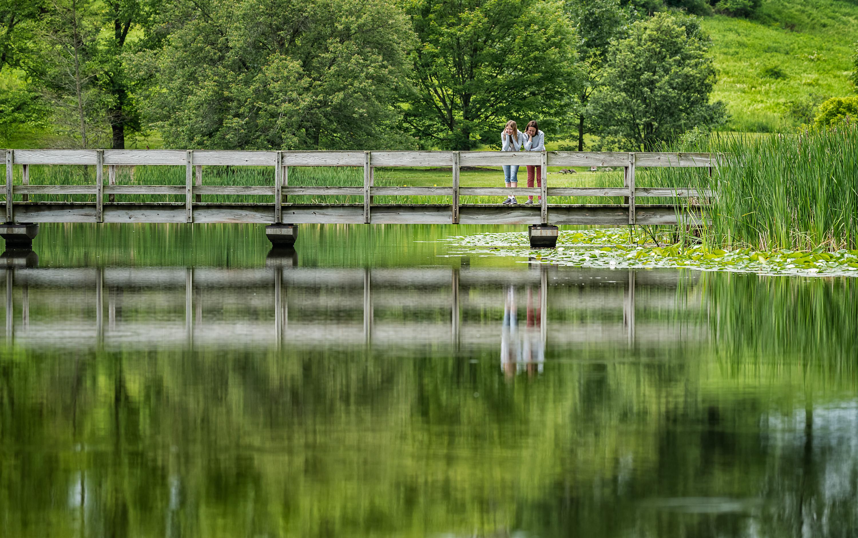 Newman Arboretum - Botanical Garden in Ithaca (NY -USA). Photography Conmisojos