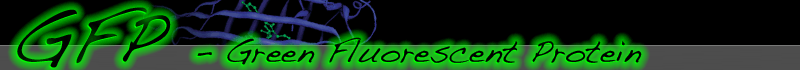 The GFP Site