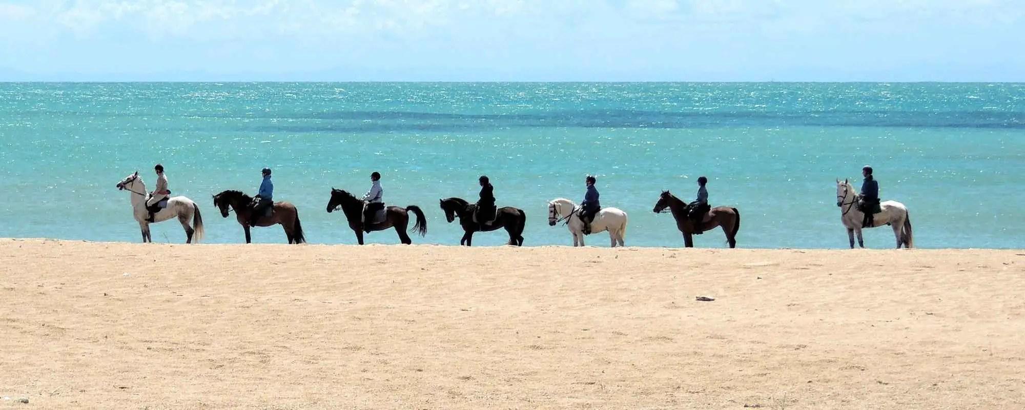 Cadiz horse riding