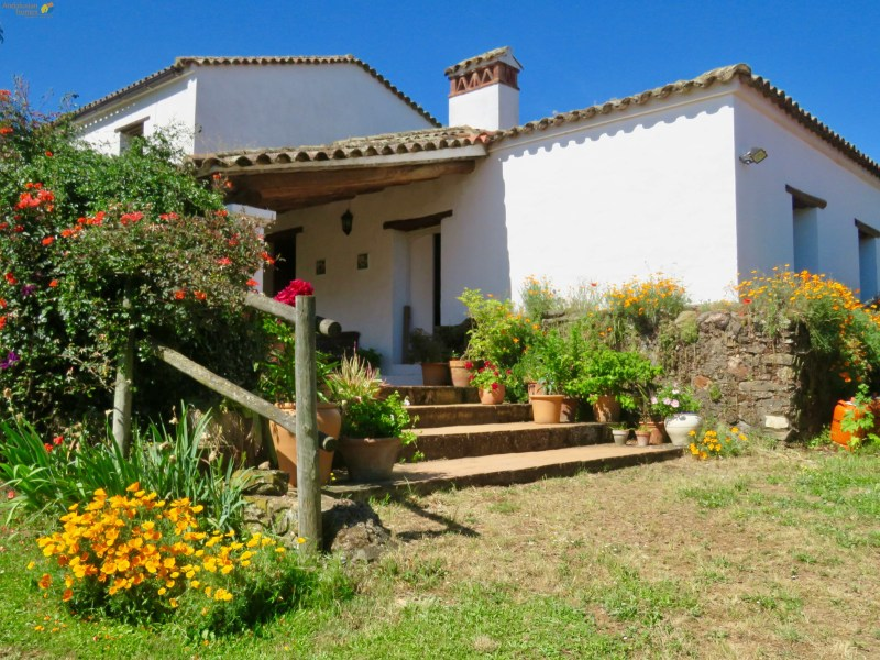 Andalusian Homes