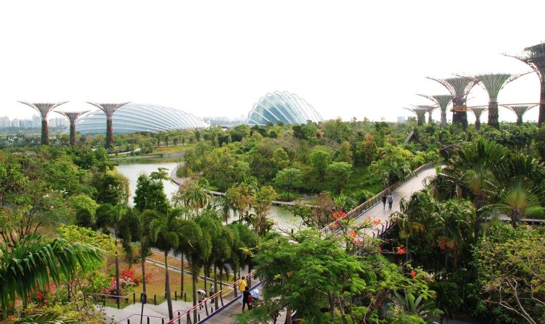 Garden By The Bay East 10 best places in singapore for nature photography
