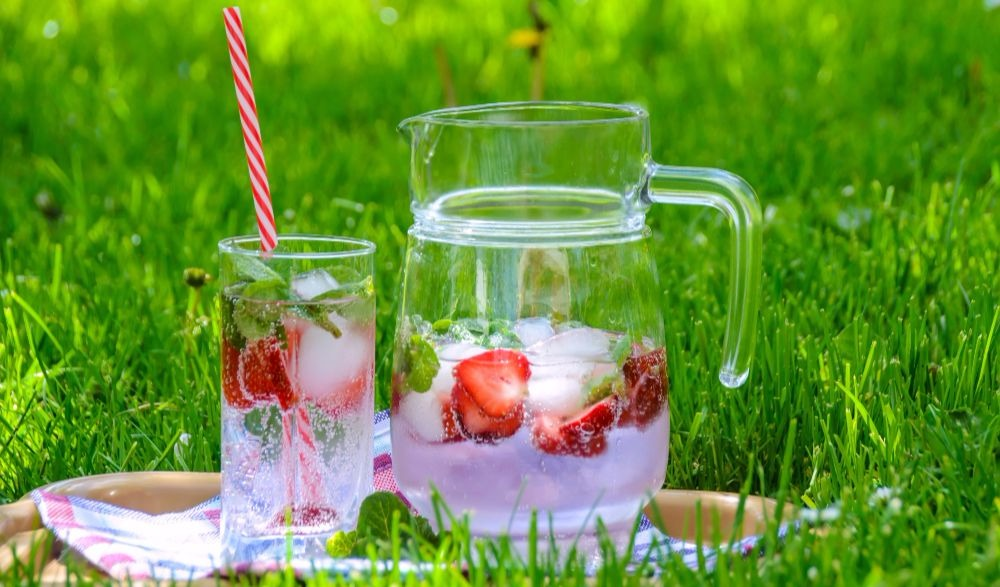 Herb And Fruit Infused Water Ideas For A Happy Body