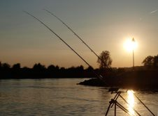 Ijssel Feederfishing