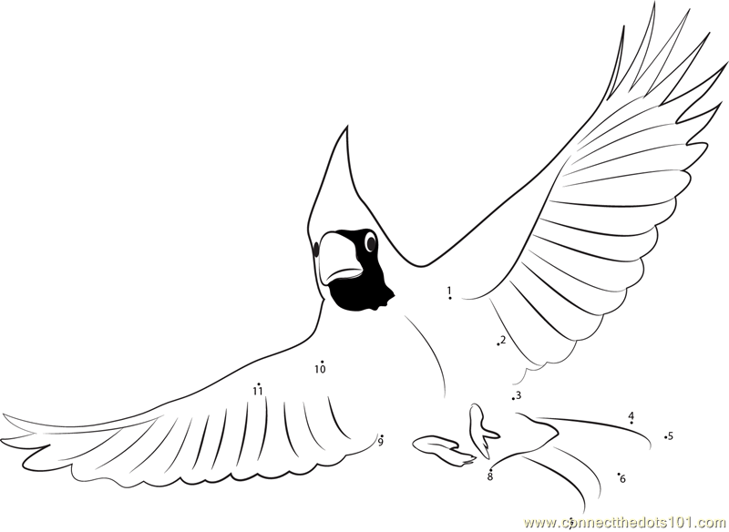 Printable Coloring Page Cardinal Bird Seed Coloring Pages