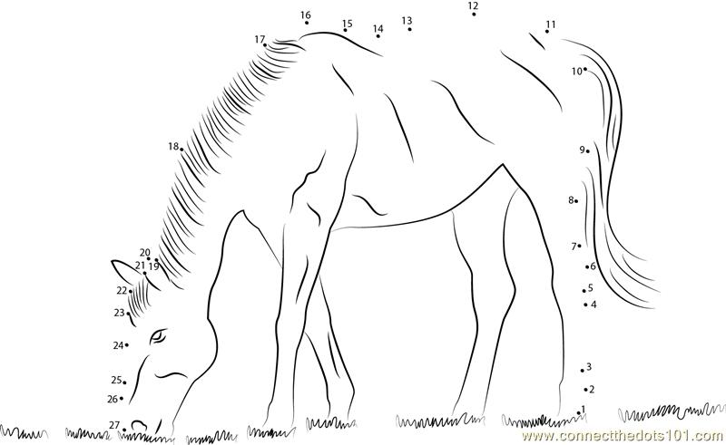 Horse Eating Grass dot to dot printable worksheet