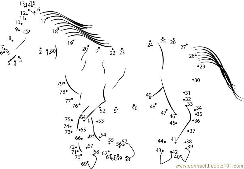 Horse going for walk dot to dot Printable Worksheet