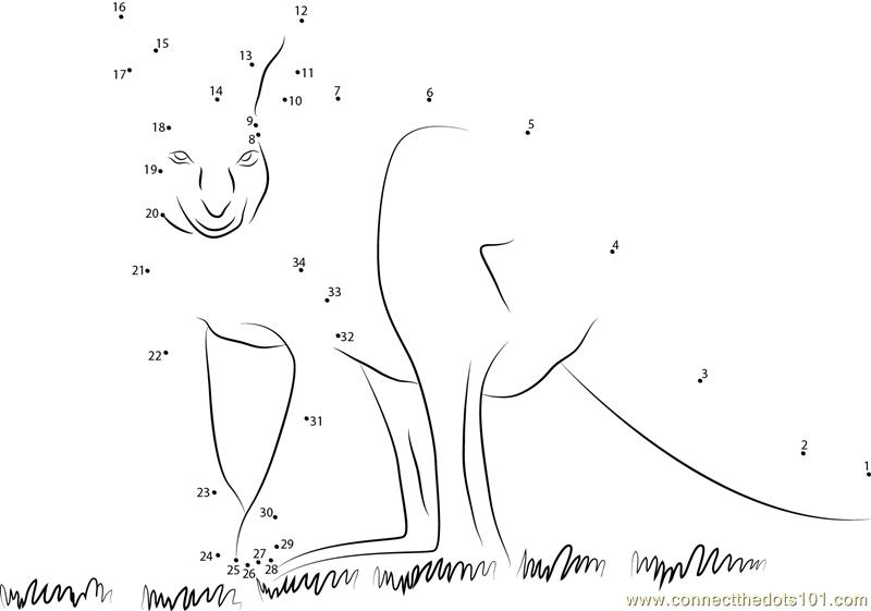 Guardian Angel Kangaroo Dot To Dot Printable Worksheet