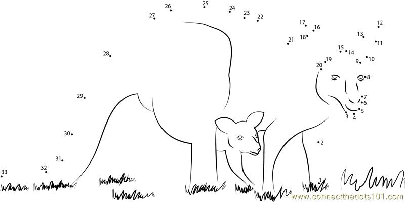 Kangaroo And Baby Dot To Dot Printable Worksheet