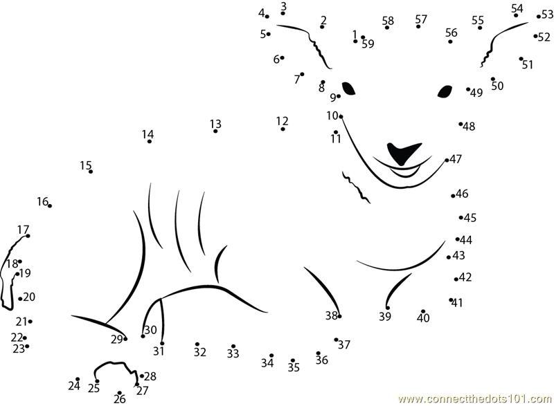 Sweet Smile Of Lamb dot to dot printable worksheet