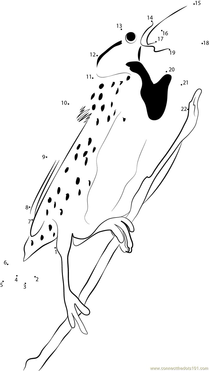 Hang on Tree Western Meadowlark dot to dot printable