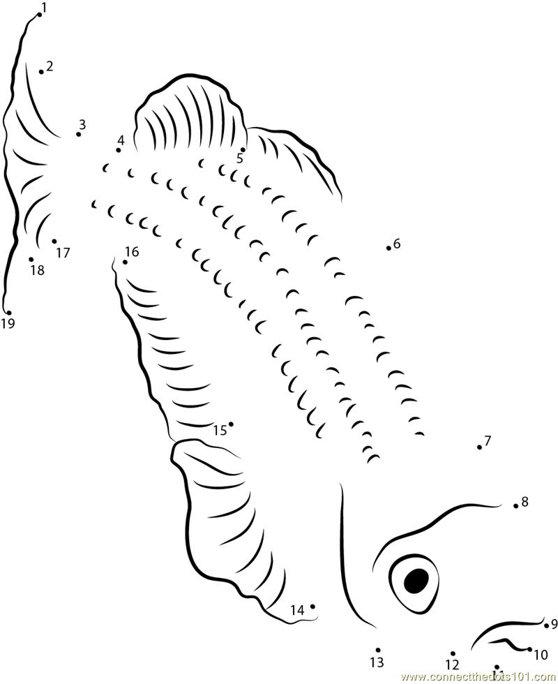 Threadfin Rainbowfish dot to dot printable worksheet