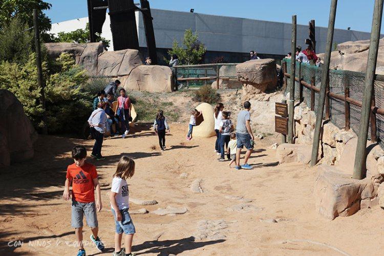 zona-excavacion-dinopolis