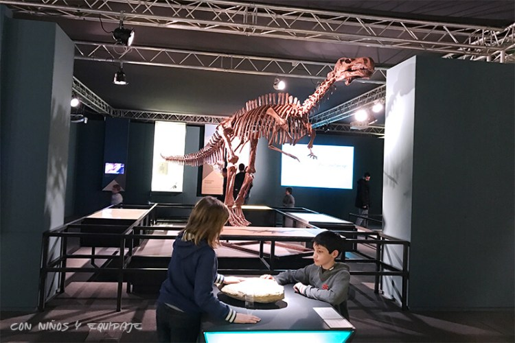 Exposición de Dinosaurios - Museo de las Artes y las Ciencias