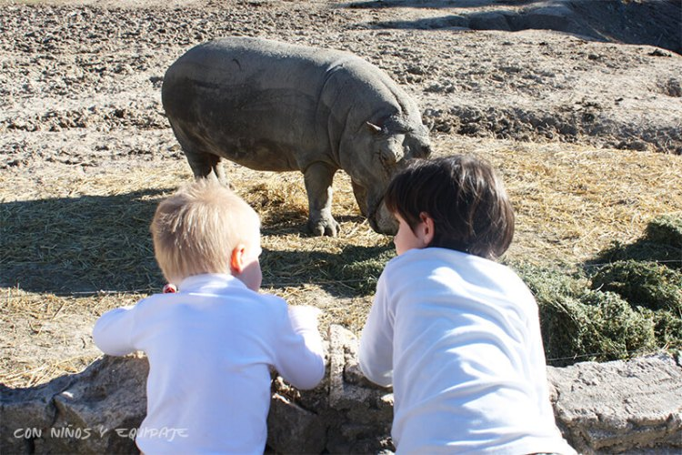 Zoos y Safaris en Alicante