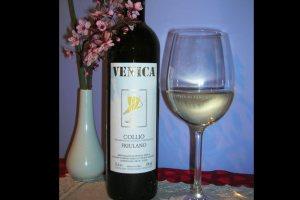Friulano-of-Venica