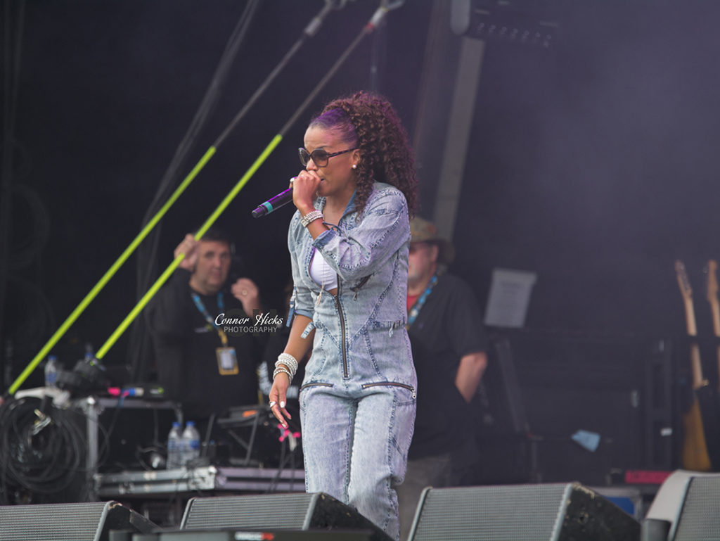 Ms Dynamite Live Mutiny Festival 1024x769 Mutiny Festival 2015