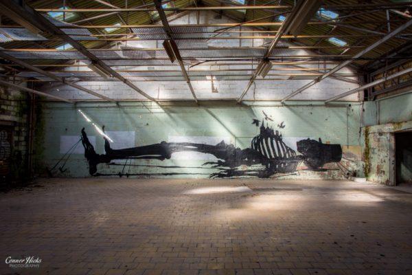 warehouse graffiti belgium urbex art 1024x683 Skeleton Warehouse, Belgium