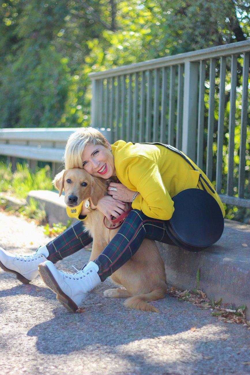conny doll lifestyle: Blogpost über den Hunde-Kauf, Welche Fragen solltest Du Dir vor dem Kauf stellen.