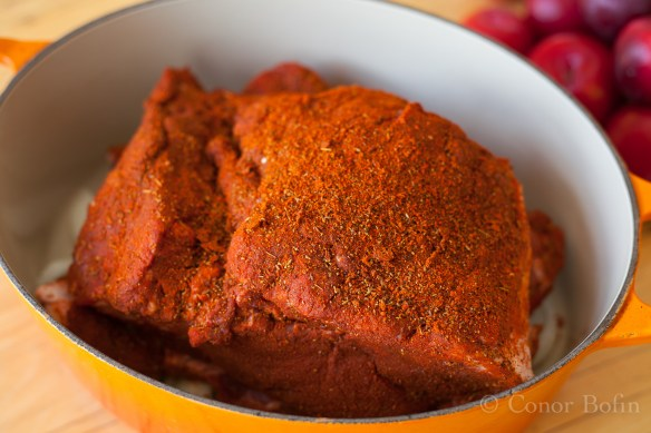 Pulled pork and chili plum sauce (5 of 15)