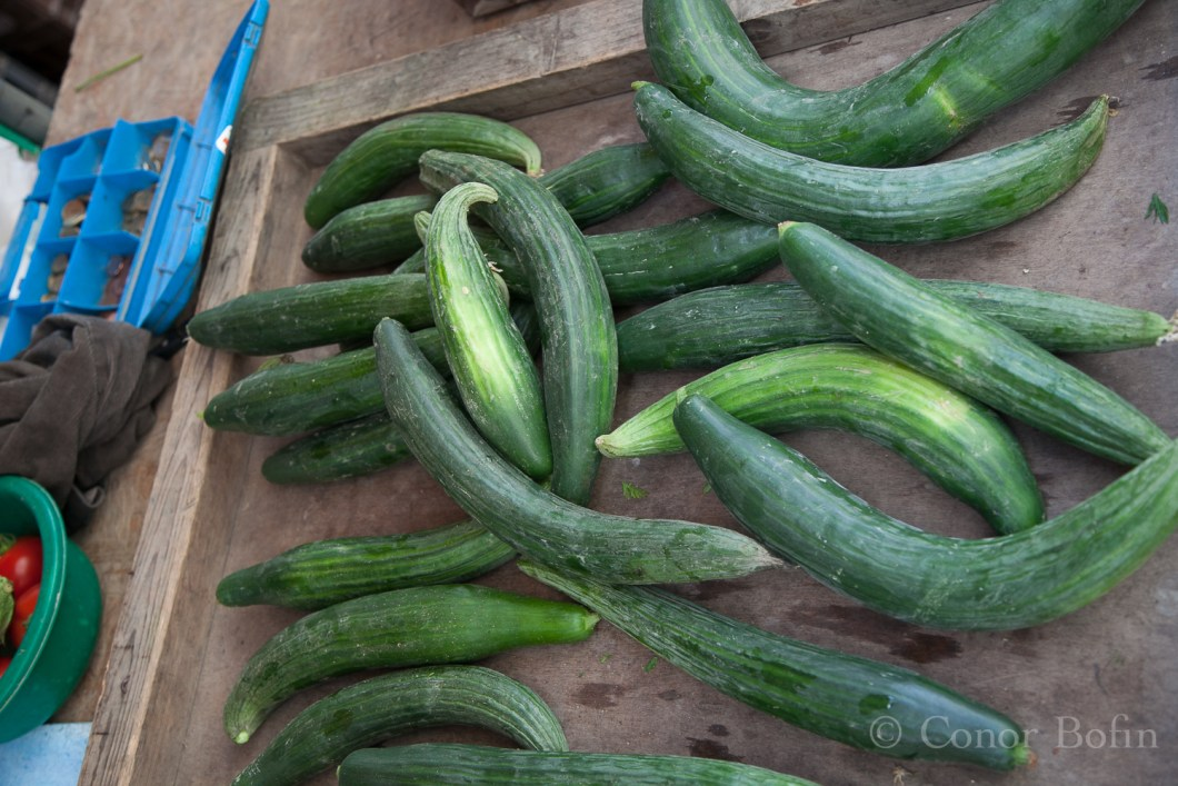 When is the last time you saw a curved cucumber. That's how they grow them for themselves in France!