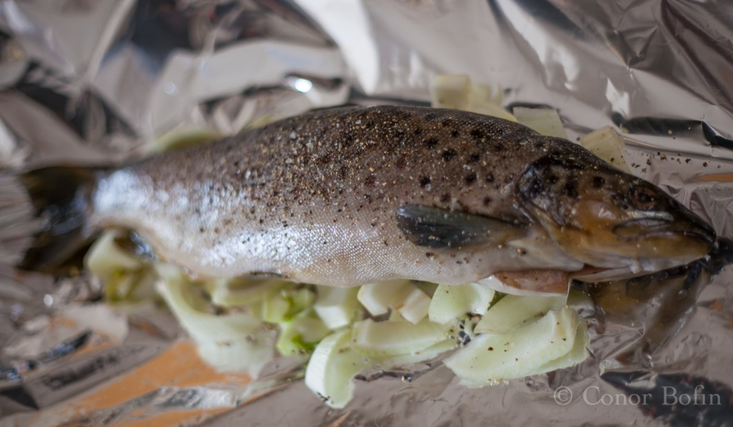 Steamed trout with fennel (1 of 13)