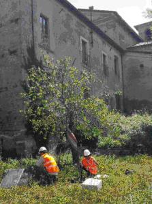 FOTO 4, tecnici a lavoro