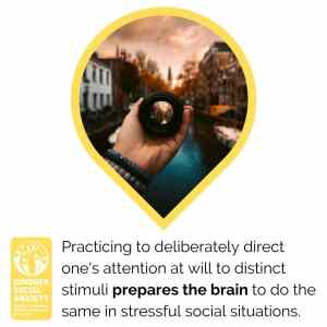 Practicing to deliberately direct one's attention at will to distinct stimuli prepares the brain to do the same in stressful social situations.