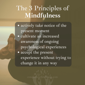 The three main principles of mindfulness are the following: (1) Actively take notice of the present moment. (2) Cultivate an increased awareness of ongoing psychological experiences. (3) Accept the present experience without trying to change it in any way.