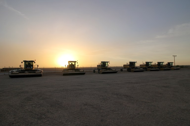 Imperial Valley_Mamer Hay_Challenger windrower