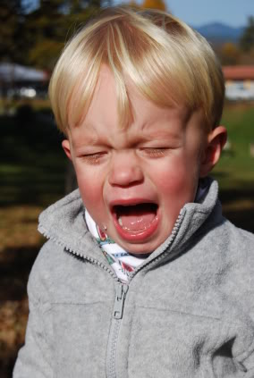 """That's a Bit of an Overreaction!"" Or is it... What's Behind Your Toddler's Tantrums?"