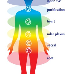 diagram of chakra [ 665 x 1188 Pixel ]