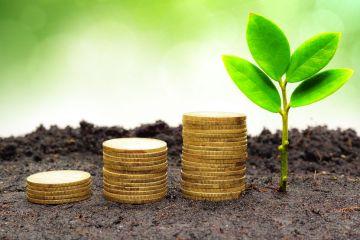 Sustainable Profitability