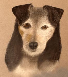 Dog Pastel Portrait, PetsPortraits4u