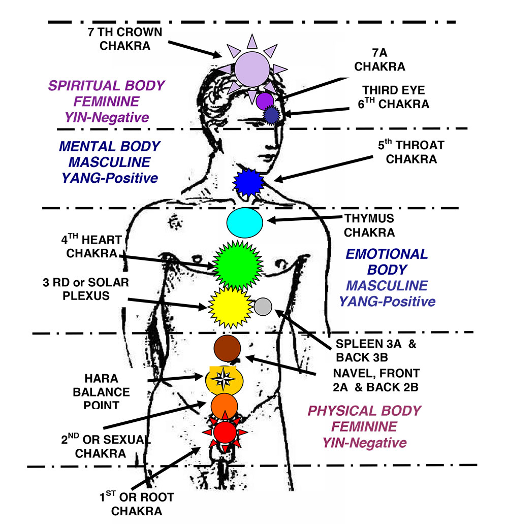 medium resolution of activate the 7 chakras with this powerful chakra meditation chakra diagram in the body