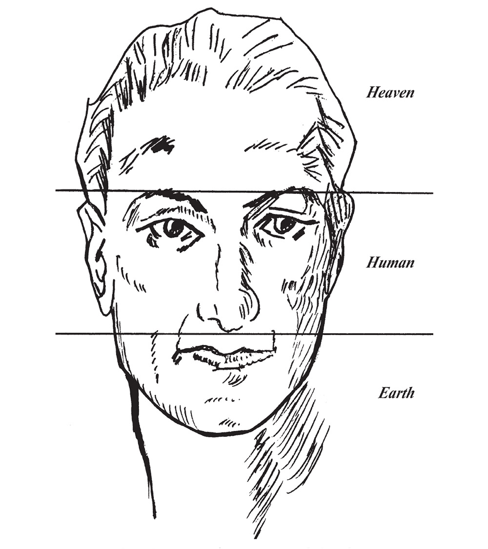 hight resolution of chinese face reading diagram 2
